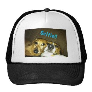 A dachshund and a beagle taking a selfie cap