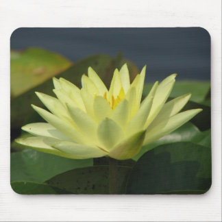 A Day at the Pond series Mouse Mat
