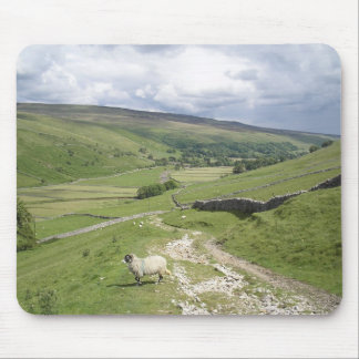 A Day in the Dales Mouse Pad