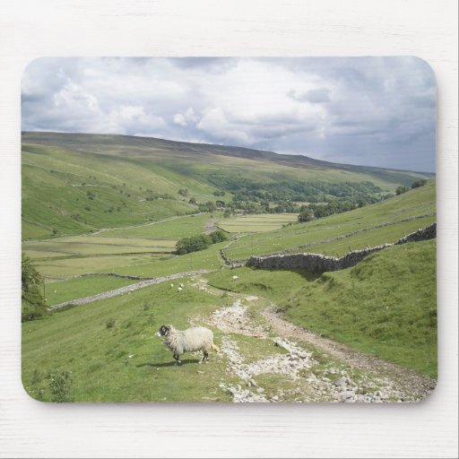 A Day in the Dales Mouse Mats