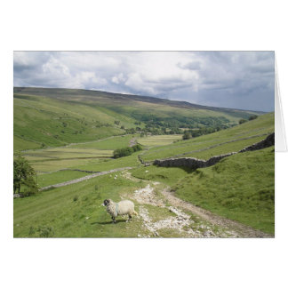 A Day in the Yorkshire Dales collection Card