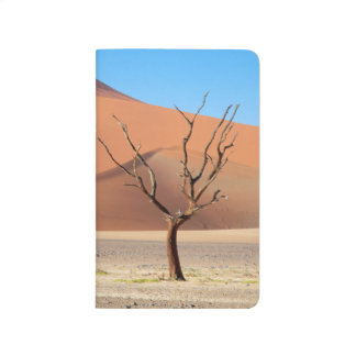 A dead tree on a desert plain with dunes journal