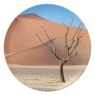A dead tree on a desert plain with dunes plate