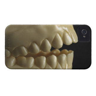 A dental model Case-Mate iPhone 4 cases