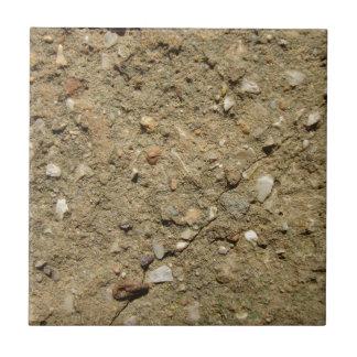 A Desert in Miniature Small Square Tile
