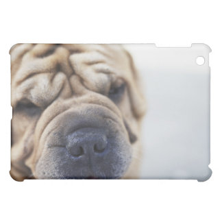 A dog, close-up. case for the iPad mini