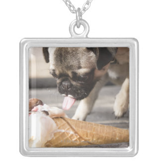A dog eating an ice cream from a pavement silver plated necklace