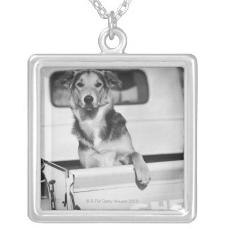 A dog in a car. silver plated necklace