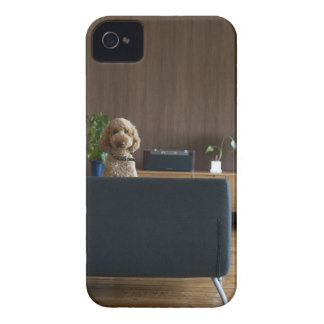A dog in the riving room iPhone 4 case