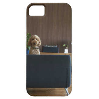 A dog in the riving room iPhone 5 case