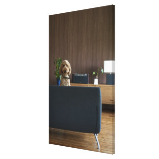 A dog in the riving room stretched canvas print