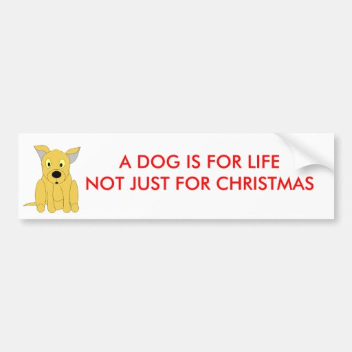 A DOG IS FOR LIFENOT JUST FOR CHRISTMAS BUMPER STICKER
