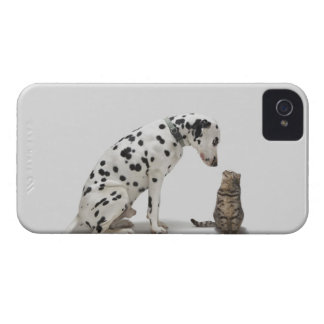 A dog looking at a cat iPhone 4 cases