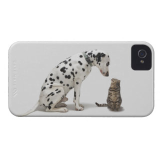 A dog looking at a cat iPhone 4 covers