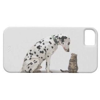 A dog looking at a cat iPhone 5 covers