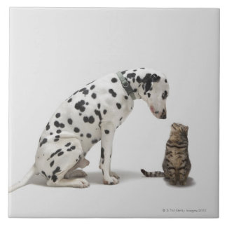 A dog looking at a cat tile