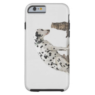 A dog looking at a cat tough iPhone 6 case