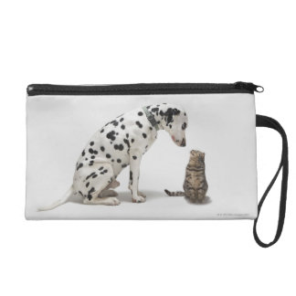 A dog looking at a cat wristlet