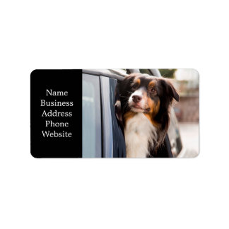 A Dog With Her Head Out of a Car Window Address Label