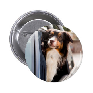 A Dog With Her Head Out of a Car Window 6 Cm Round Badge