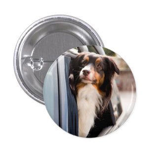A Dog With Her Head Out of a Car Window 3 Cm Round Badge