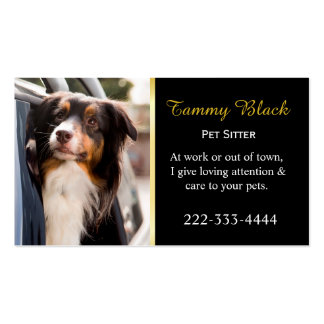 A Dog With Her Head Out of a Car Window Pack Of Standard Business Cards