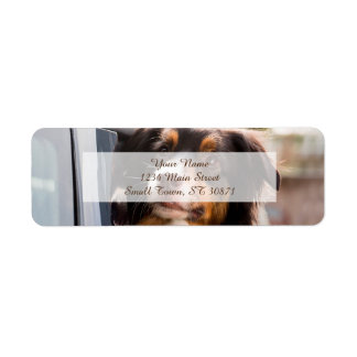 A Dog With Her Head Out of a Car Window Return Address Label