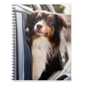 A Dog With Her Head Out of a Car Window Notebook