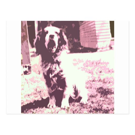 A Dogs Life Post Card