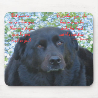 A Dog's Life...window Mouse Pad