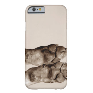 A dogs paws barely there iPhone 6 case