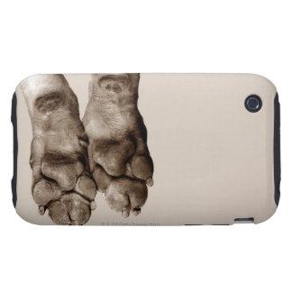 A dogs paws tough iPhone 3 case