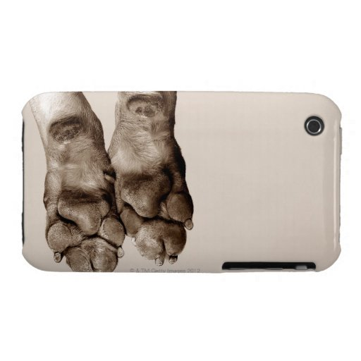 A dogs paws iPhone 3 Case-Mate cases