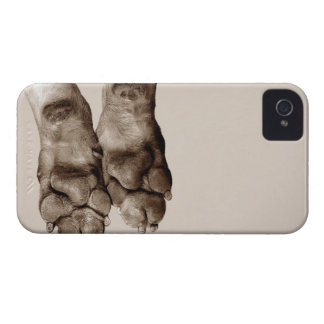 A dogs paws iPhone 4 covers
