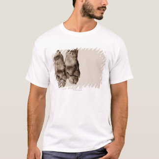 A dogs paws T-Shirt