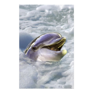 A dolphins best smile personalised stationery