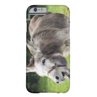 A donkey barely there iPhone 6 case