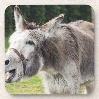 A donkey beverage coasters