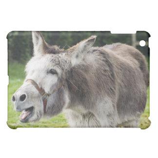 A donkey case for the iPad mini