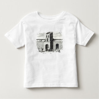 A Doorway in the Great Wall Toddler T-Shirt