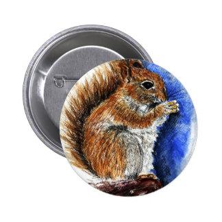 A Douglas Squirrel watercolor pencil Buttons