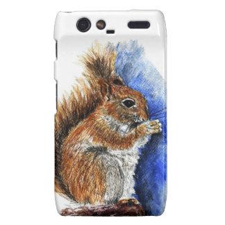 A Douglas Squirrel watercolor pencil Droid RAZR Case