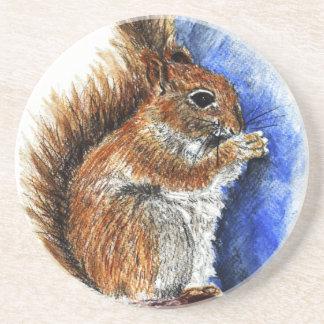 A Douglas Squirrel watercolor pencil Drink Coasters