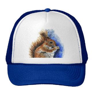 A Douglas Squirrel watercolor pencil Hats