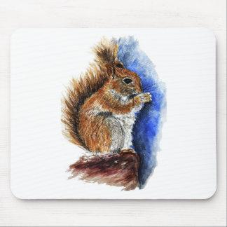 A Douglas Squirrel, watercolor pencil Mouse Pad