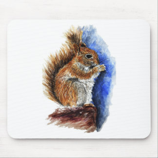 A Douglas Squirrel watercolor pencil Mousepad