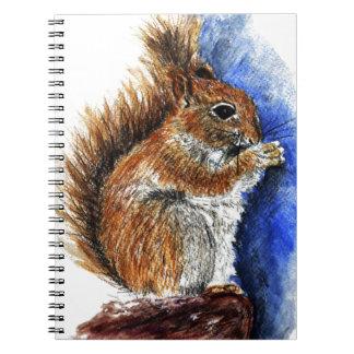 A Douglas Squirrel watercolor pencil Note Books
