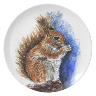 A Douglas Squirrel watercolor pencil Party Plates