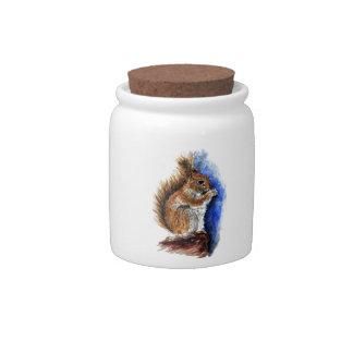 A Douglas Squirrel, watercolor pencil Candy Jar