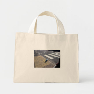 A dove crossing the street bags